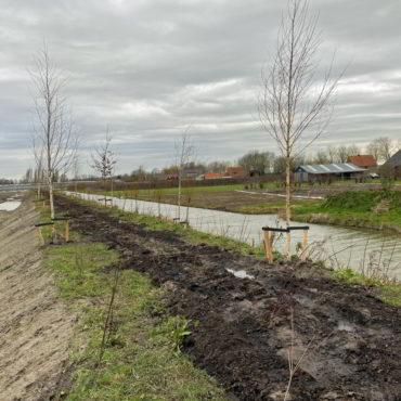 Groen zone Zevenhuis fase 1b is aangelegd